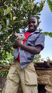 Eliphaz Kabwana with his rabbit, standing on platform of brick hutch